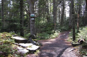 Bell Park, Mount Uniacke