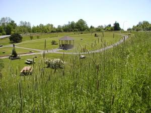 Rex McCoul Park Trail