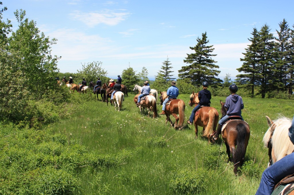 evangeline trail ride