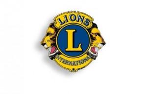 lions free swim